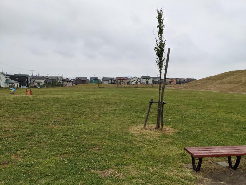 室蘭・八丁平南公園の芝生広場