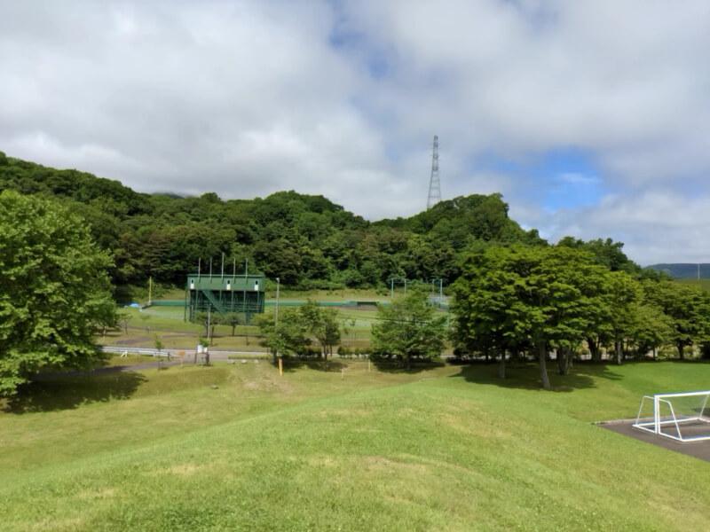 川上公園野球場の全景